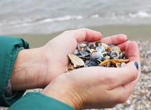 Escudos nas mãos no Mar Negro fotos de stock