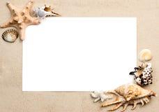Escudos no frame da areia fotos de stock