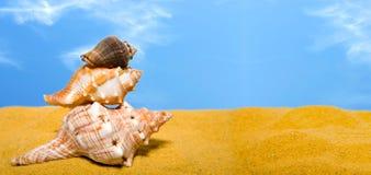 Escudos panorâmicos na praia Fotografia de Stock Royalty Free