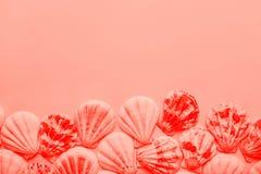 Escudos redondos lisos do mar arranjados no quadro da beira na cor coral viva na moda no fundo cor-de-rosa monocromático Copie o  imagem de stock royalty free