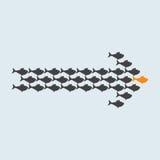 Escuela de la natación gris de los pescados en la forma de la flecha Imagen de archivo libre de regalías