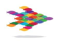 Escuela de pescados coloridos Imagen de archivo libre de regalías