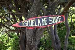 Escuela de surf Stock Photos