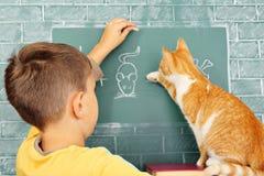 Escuela del gato Foto de archivo libre de regalías