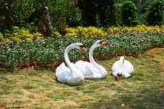 Escultura da cisne no prado Imagem de Stock