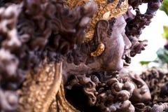 Escultura das madeiras imagens de stock