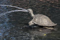 Escultura de bronce de la tortuga en fuente de agua imagen de archivo libre de regalías
