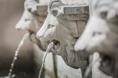 Escultura de fontes da cabeça do leão Fotos de Stock Royalty Free