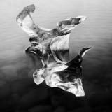Escultura de gelo - Islândia Fotos de Stock Royalty Free