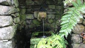 Escultura de la fuente en jardines tropicales en Madeira metrajes