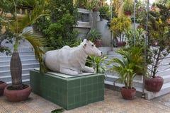 Escultura de la vaca Fotos de archivo libres de regalías