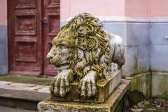 Escultura de mármol hermosa de un león de mentira en el estado de Nata imagenes de archivo