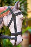 Escultura de madera de la cabeza de caballo Imágenes de archivo libres de regalías