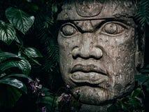 Escultura de Olmec cinzelada da pedra Estátua principal de pedra grande em uma selva fotos de stock