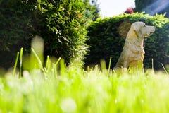 Escultura de um cão no jardim imagem de stock