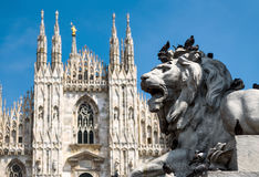 Escultura de um leão na frente de Milan Cathedral Imagem de Stock Royalty Free