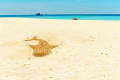 Escultura de un tiburón en la playa, Hangnaameedhoo, Maledives de la arena Copie el espacio para el texto imagen de archivo libre de regalías