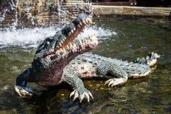 Escultura del cocodrilo Imagen de archivo libre de regalías