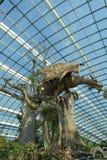 Escultura del dragón Foto de archivo