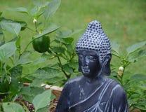 Escultura del jardín de Buda con paprikas verdes foto de archivo