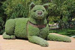 Escultura del perro de las flores Foto de archivo libre de regalías