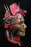 Escultura del plástico del arte de la máscara Foto de archivo libre de regalías