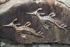 Escultura del Seahorse del metal Fotografía de archivo