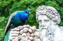 Escultura do jardim, parque de Lazienki, Polônia Imagem de Stock