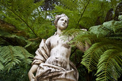 Escultura do Vênus entre as árvores foto de stock