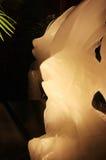 Escultura dos peixes fora do gelo Imagens de Stock Royalty Free