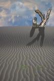 Escultura enterrada de la mano en desierto Imágenes de archivo libres de regalías