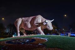 Escultura hecha de luces, vaca de la vaca de la Navidad de la flor en Ventspils, Letonia Foto de archivo libre de regalías