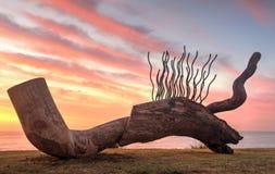 A escultura intitulou Currawong, mostrando a detalhes folhosa contra a SU Imagem de Stock