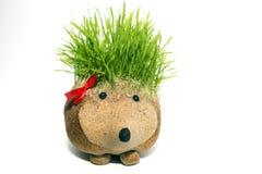 Escultura natural do ouriço com as espinhas feitas crescendo o trigo Fotografia de Stock