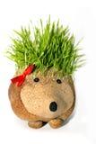 Escultura natural do ouriço com as espinhas feitas crescendo o trigo Foto de Stock Royalty Free