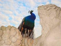 A escultura que personifica o rio e o pavão do erro Fotografia de Stock