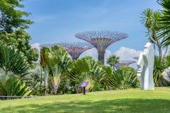 Escultura y Supertrees fotos de archivo