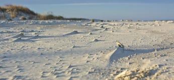 Esculturas da areia Fotografia de Stock