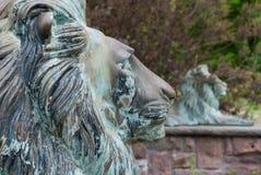 Esculturas de cobre amarillo de acero del león en naturaleza imágenes de archivo libres de regalías