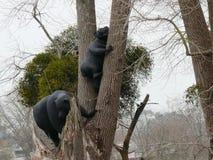 Esculturas de dos osos negros encaramados imágenes de archivo libres de regalías