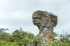 Esculturas de piedra naturales Fotos de archivo libres de regalías