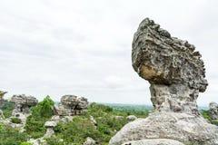 Esculturas de piedra naturales Fotografía de archivo libre de regalías