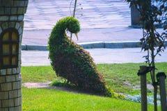 esculturas divertidas de pavos reales coloridos en hierba por la trayectoria de piedra Foto de archivo