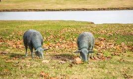 Esculturas do gramado de dois carneiros de pastagem Fotos de Stock