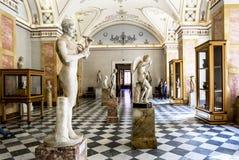 Esculturas do grego clássico no salão de Hercules no Hermitag Imagens de Stock