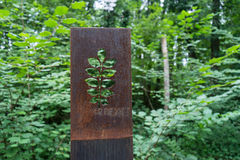 Esculturas oxidadas de la flor del metal en bosque Imágenes de archivo libres de regalías