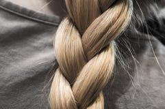 Escupitajo virginal Pelo del ` s de las mujeres hairstyle Trenza agradable Rubia imagen de archivo libre de regalías