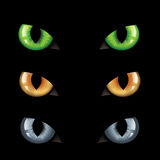 Escuridão dos olhos de gato n Foto de Stock Royalty Free