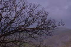 Escuridão dos vales Fotos de Stock