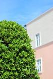 Escuro - arbusto e construção verdes Imagens de Stock